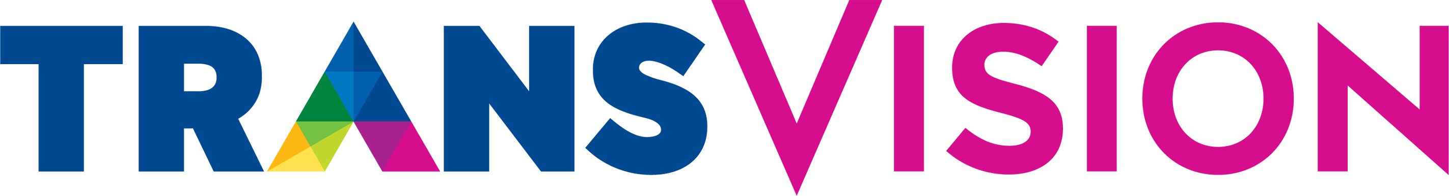 TransVision.png